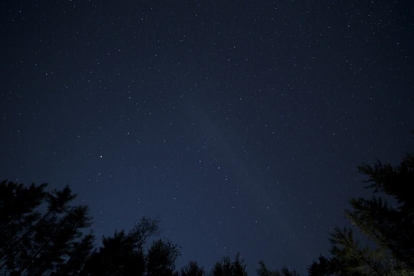 公園から見上げた綺麗な星空